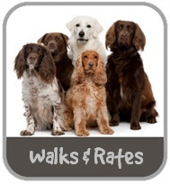 Dog Walking and Rates